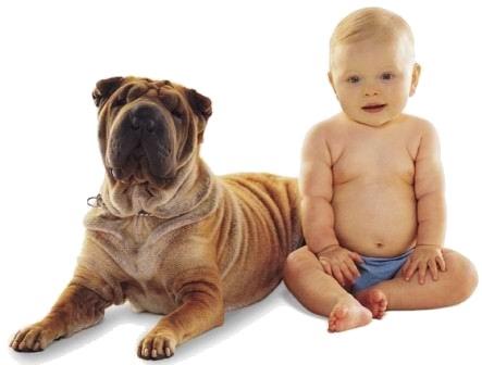 Kind zit naast een hond