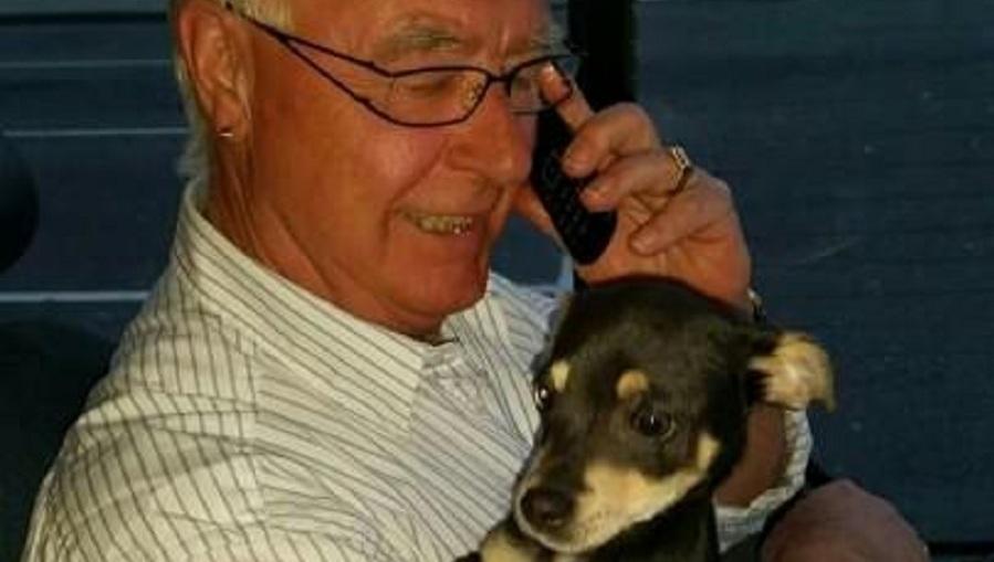 Amsterdamse buschauffeur remt voor verdwaalde puppy