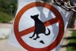 Salland | Geen hondentoiletten in Lochem