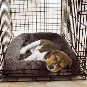 Slapende puppy in een bench